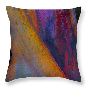 Turning Point Throw Pillow by Richard Laeton