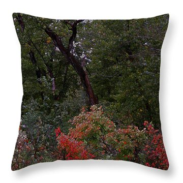 Throw Pillow featuring the digital art Turning by Stuart Turnbull