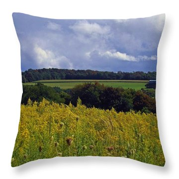 Turning The Page Throw Pillow
