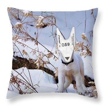 turnOmatic White Swiss Shepherd Pup Throw Pillow