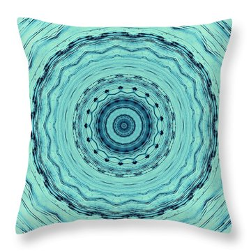 Turquoise Serenade Throw Pillow by Sheila Ping