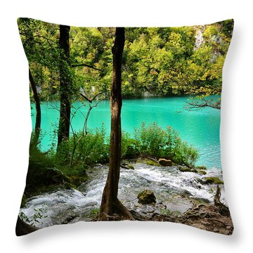 Turquoise Waters Of Milanovac Lake Throw Pillow by Two Small Potatoes