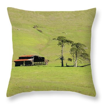 Throw Pillow featuring the photograph Turri Road - San Luis Obispo Ca by Art Block Collections