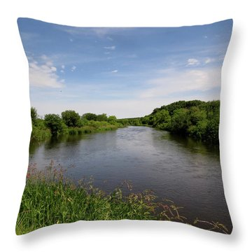 Throw Pillow featuring the photograph Turtle Creek by Kimberly Mackowski