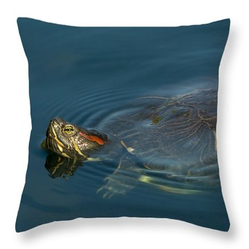 Turtle Floating In Calm Waters Throw Pillow