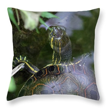Turtle Getting Some Air Throw Pillow
