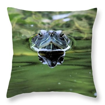 Turtle Head Throw Pillow by Karol Livote