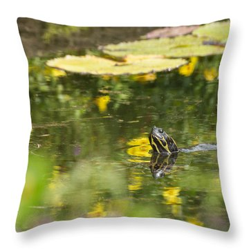 Throw Pillow featuring the photograph Turtle  by Julie Andel