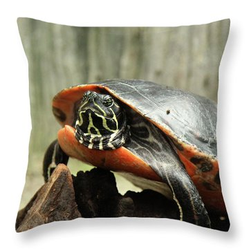 Turtle Neck Throw Pillow