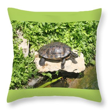 Turtle On A Rock Throw Pillow by Ellen Tully
