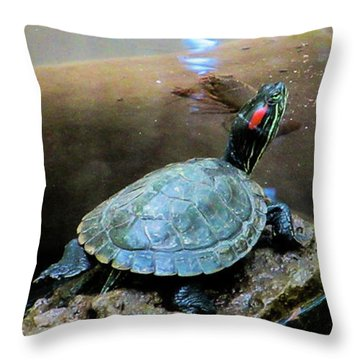 Turtle On Rock Throw Pillow