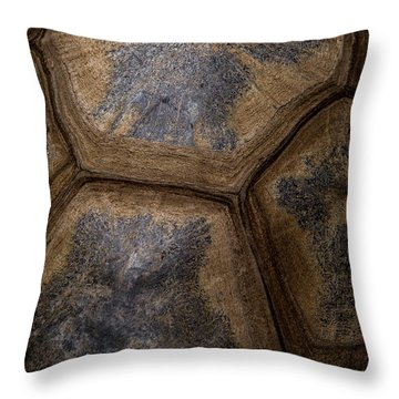 Turtle Shell Throw Pillow