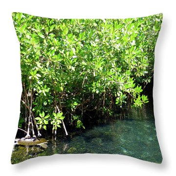 Throw Pillow featuring the photograph Turtle Swim by Francesca Mackenney