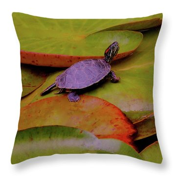 Turtle Travels Throw Pillow
