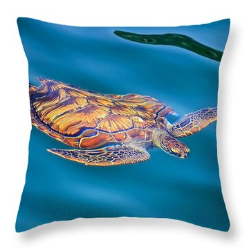 Turtle Up Throw Pillow