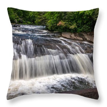 Turtleback Falls Throw Pillow