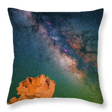 Turtles All The Way Down Throw Pillow