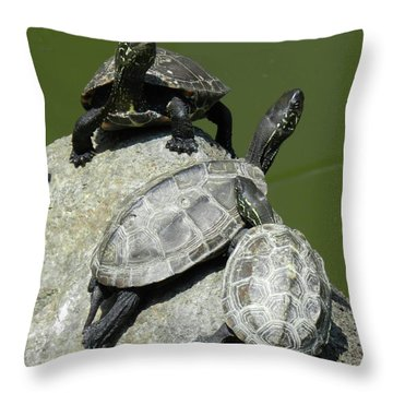 Turtles At A Temple In Narita, Japan Throw Pillow