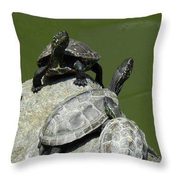 Turtles At A Temple In Narita, Japan Throw Pillow