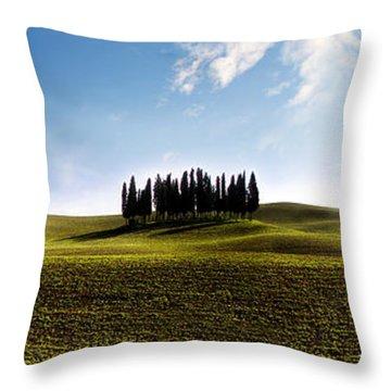 Tuscan Cypress Tree Throw Pillow