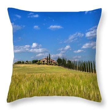 Tuscan Estate 2 Throw Pillow