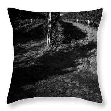 Tuscan Vineyard Throw Pillow