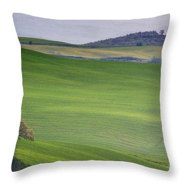 Tuscany Landscape Throw Pillow by Ana Mireles