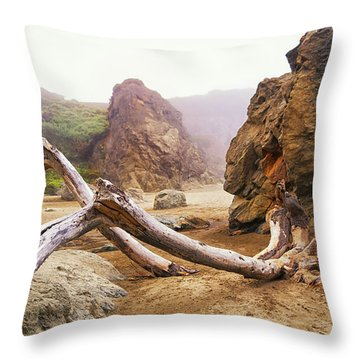 Throw Pillow featuring the photograph Tusk West Coast Image Art by Jo Ann Tomaselli