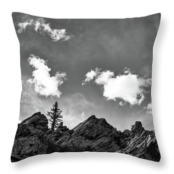 Throw Pillow featuring the photograph Tusas Canyon New Mexico by Mary Lee Dereske