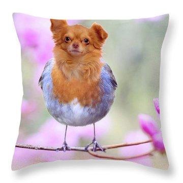 Tweetie Dog Throw Pillow