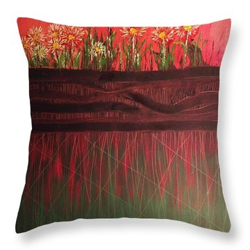 Twelve Daises In Window Box Throw Pillow