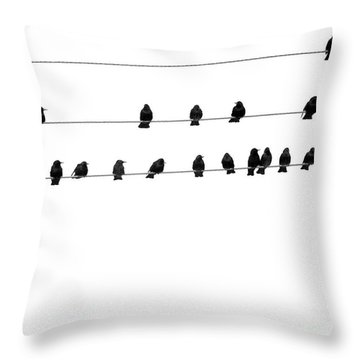 Twenty Blackbirds Throw Pillow