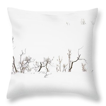 Twigs In Snow Throw Pillow