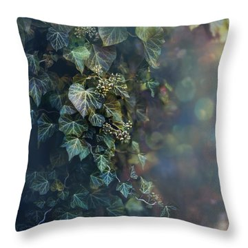 Twilight And Shadow Throw Pillow