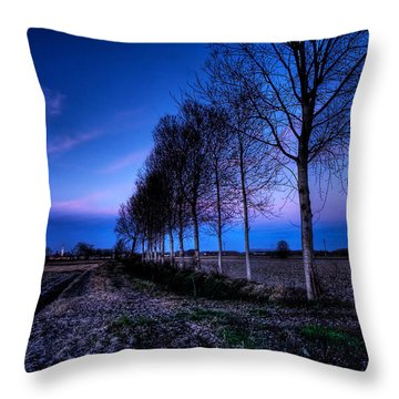 Twilight And Trees Throw Pillow