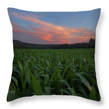 Twilight Cornfield Throw Pillow