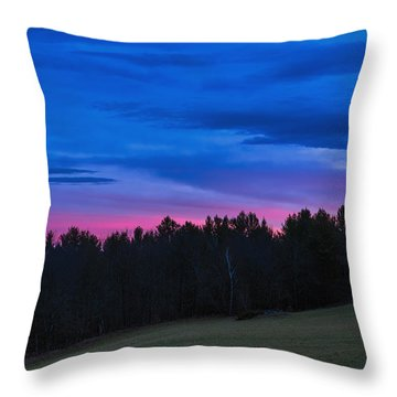 Twilight Field Throw Pillow by Tom Singleton