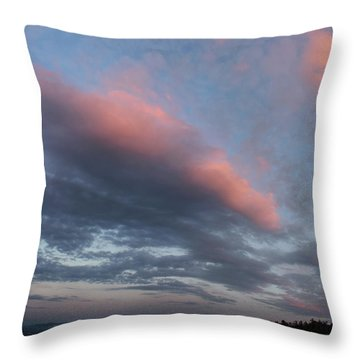Twilight In The Wilderness Throw Pillow