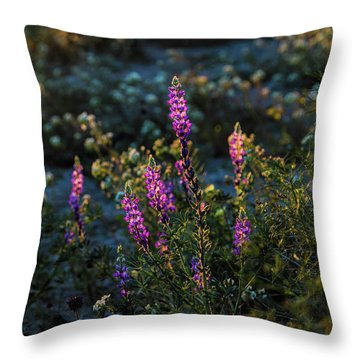 Twilight Lupine Throw Pillow