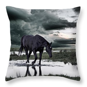 Hanoverian Throw Pillows