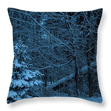 Twilight Snow Throw Pillow