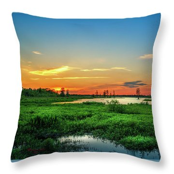 Throw Pillow featuring the photograph Twilights Arrival by Marvin Spates