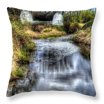 Twin Barns Throw Pillow