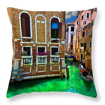 Twin Canals Throw Pillow