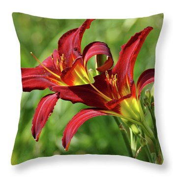 Throw Pillow featuring the photograph Twin Daylilies by Sandy Keeton