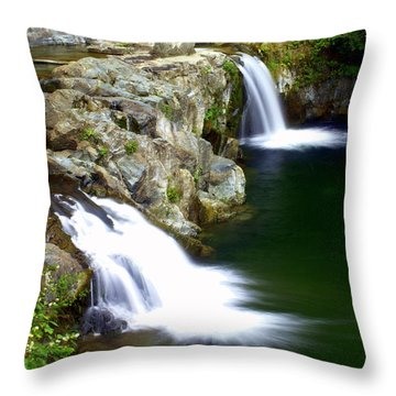 Twin Falls 3 Throw Pillow by Marty Koch