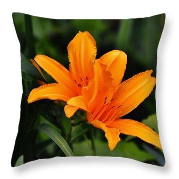 Twin Lillies Throw Pillow