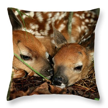 Twin Newborn Fawns Throw Pillow
