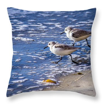 Twin Plovers Throw Pillow