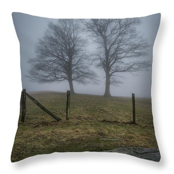 Twin Trees Late Fall Foggy Morning Throw Pillow